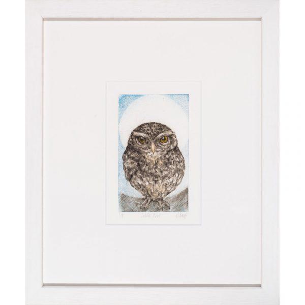 Little owl drypoint print by Sarah Bays