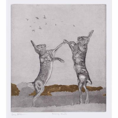 'Boxing Hares', etching by Guy Allen