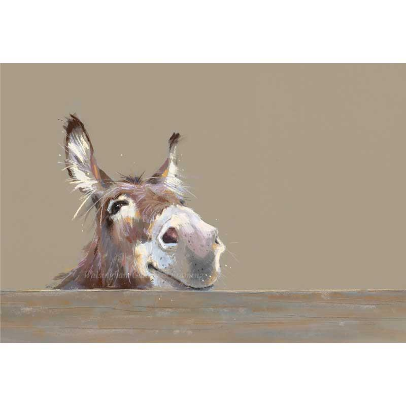 Limited edition print 'Mr Freckles' by Nicky Litchfield