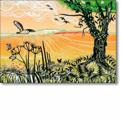 Greeting card of 'Wild Patch' by Rob Barnes