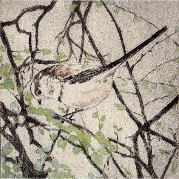 Hand tinted drypoint 'As Spring Unfurls' by Sarah Bays