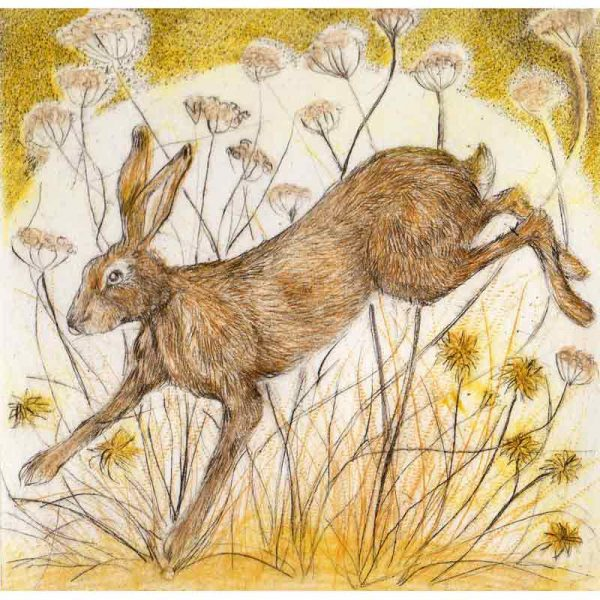 Drypoint 'Midsummer Madness' by Sarah Bays