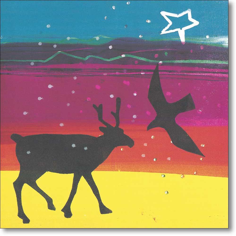 10 boxed christmas cards of 'Arctic Night' by Barbara Rae RA