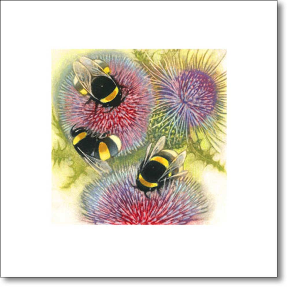 Greeting Card of 'Bumblebees on Thistles' by Louise Bird