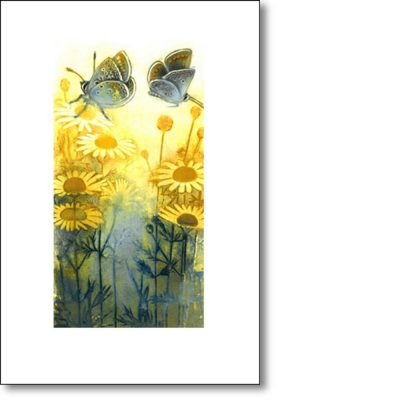 Greeting Card of 'Butterflies and Ox-Eye Daisies' by Louise Bird
