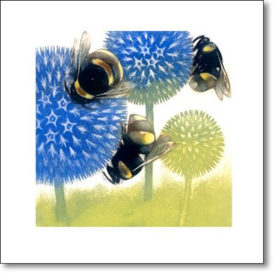 Greeting Card of 'Echinops in Flower' by Louise Bird