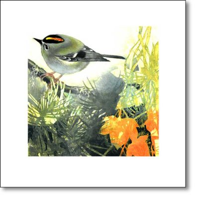 Greeting Card of 'Goldcrest' by Louise Bird