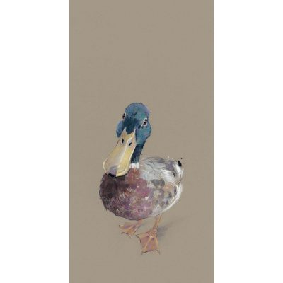 Limited edition print 'Lord Love a Duck' by Nicky Litchfield