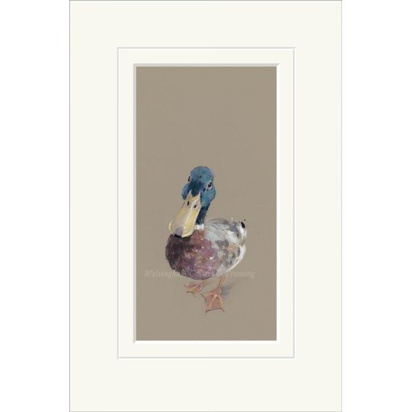 Mounted limited edition print 'Lord Love a Duck' by Nicky Litchfield
