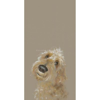 Limited edition print 'Doodle' by Nicky Litchfield