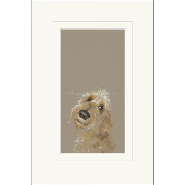 Mounted limited edition print 'Doodle' by Nicky Litchfield