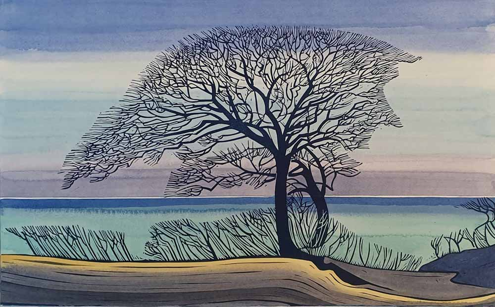 linocut and watercolour artwork of tree entitled 'Wells Oak' by Nicholas Barnham