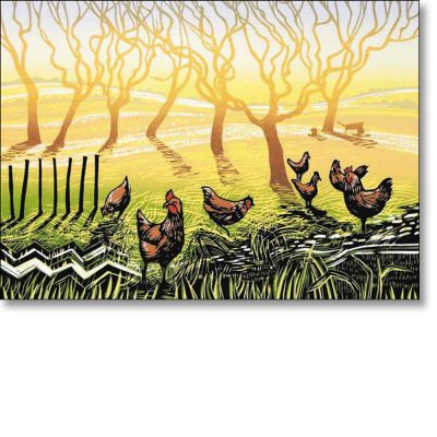 Greetings card of 'Sunrise Chickens' by Rob Barnes