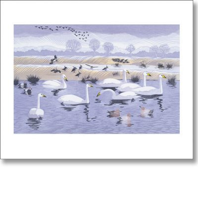 Greetings card of 'Seven Swans' by Niki Bowers