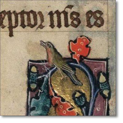 Christmas Card of 'A Robin'
