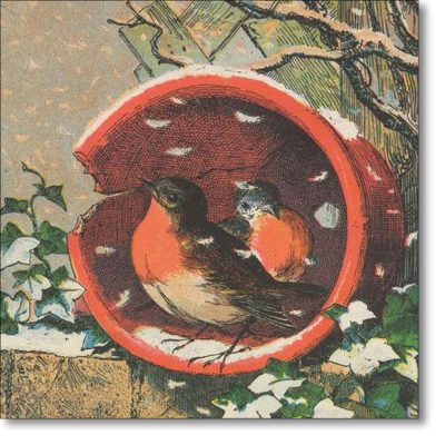 Christmas Card of 'Flowerpot Robins' an illustration from The Bright Surprise for Little Eyes