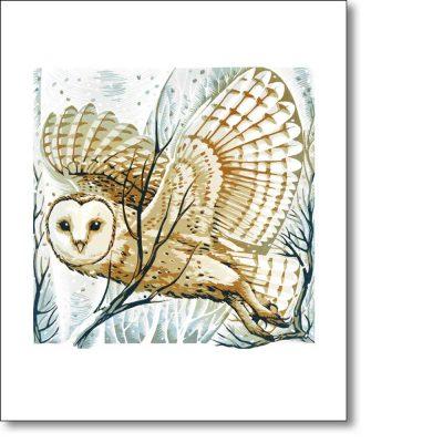 Greeting card of 'Barn Owl, Winter Branches' by Martin Truefitt-Baker