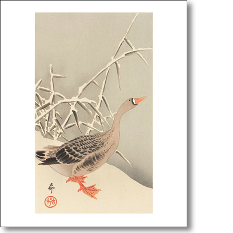 Greeting card of 'Snow Goose' by Ohara Koson