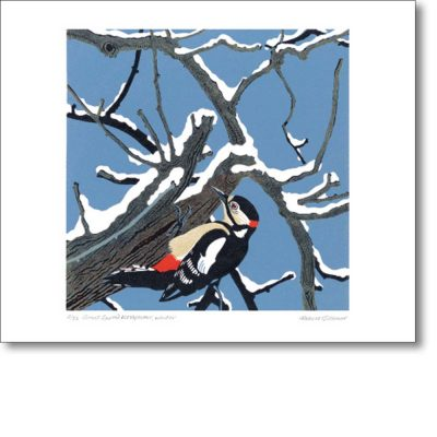 Greeting card of 'Great Spotted Woodpecker' by Robert Gillmor