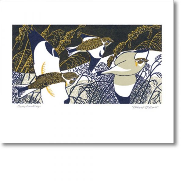Greeting card of 'Snow Buntings' by Robert Gillmor